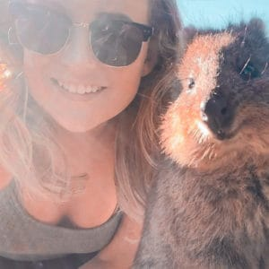 Quokka: an animal you didn't know you could see in Australia